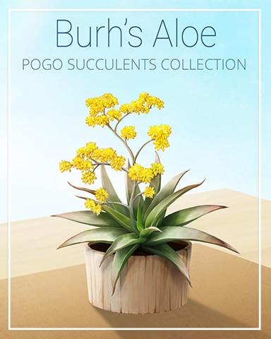 Burh's Aloe Succulent Badge - Tri-Peaks Solitaire HD