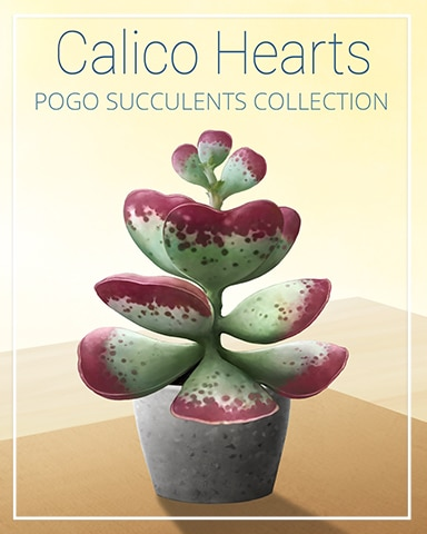 Calico Hearts Succulent Badge - Dice City Roller HD