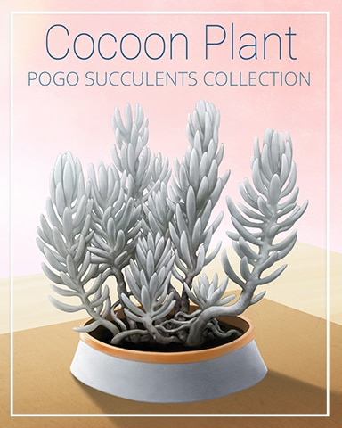 Cocoon Plant Succulent Badge - First Class Solitaire HD