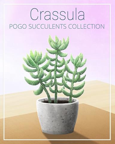 Crassula Succulent Badge - Tri-Peaks Solitaire HD