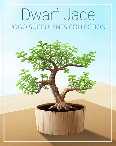 Dwarf Jade Succulent Badge - World Class Solitaire HD