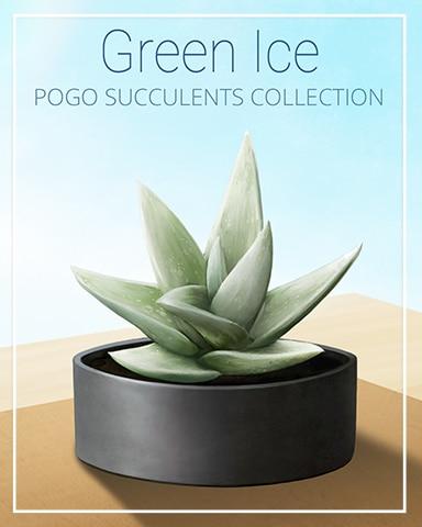 Green Ice Succulent Badge - Crossword Cove HD