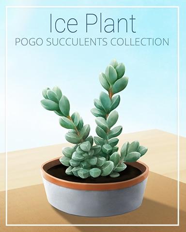 Ice Plant Succulent Badge - Poppit! Bingo