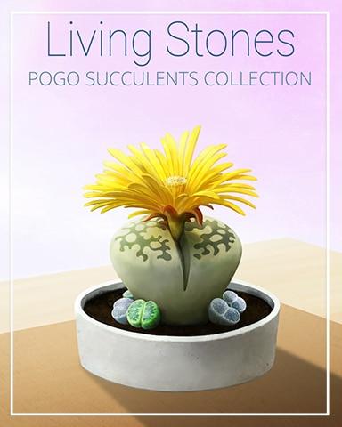 Living Stones Succulent Badge - Canasta HD
