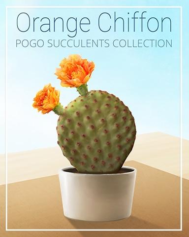 Orange Chiffon Succulent Badge - Jungle Gin HD
