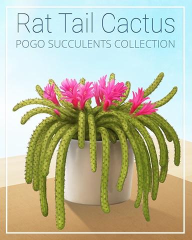 Rat Tail Cactus Succulent Badge - Spades HD