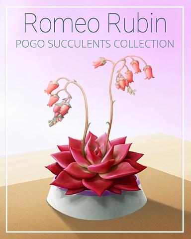 Romeo Rubin Succulent Badge - Spades HD