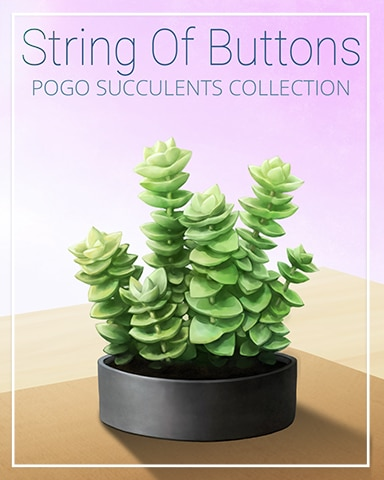 String Of Buttons Succulent Badge - Snowbird Solitaire