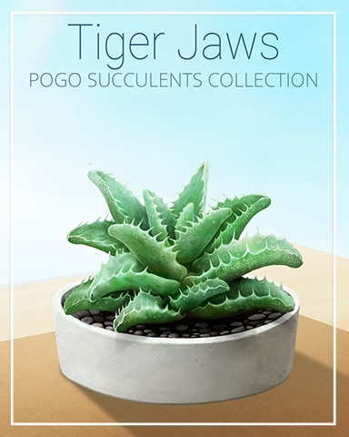 Tiger Jaws Succulent Badge - First Class Solitaire HD