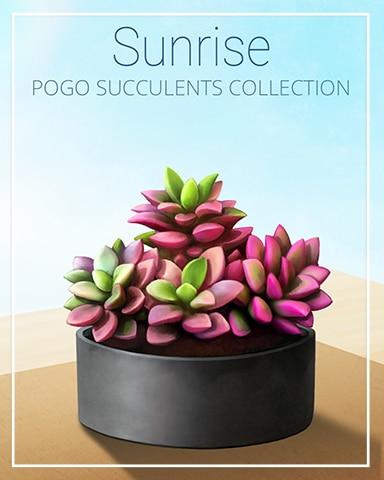 Sunrise Succulent Badge - Tri-Peaks Solitaire HD