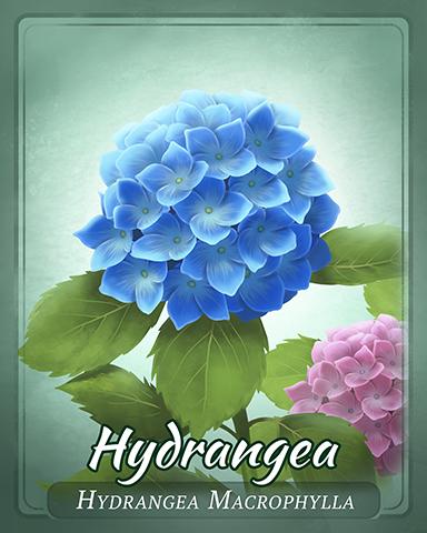 Hydrangea Badge - Mahjong Garden HD