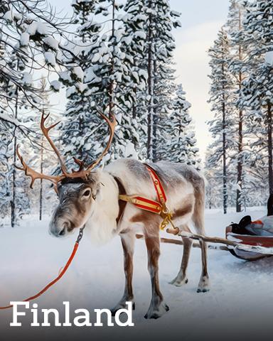 Finland Badge - Winter Wonderland