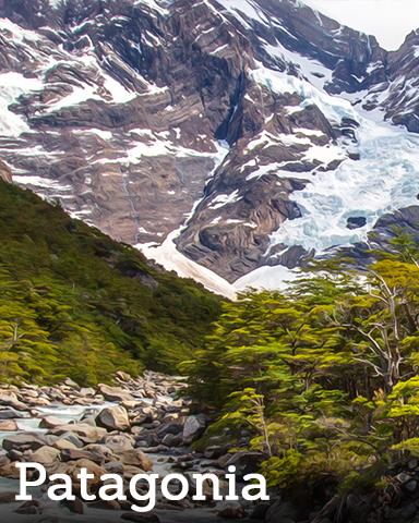 Patagonia Badge - Winter Wonderland