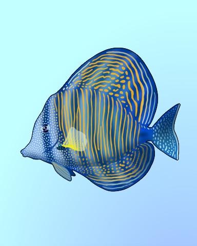 Sail Away Badge - Quinn's Aquarium