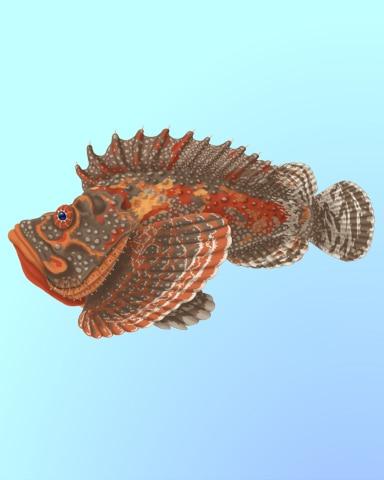 Stonefish Sighting Badge - Quinn's Aquarium