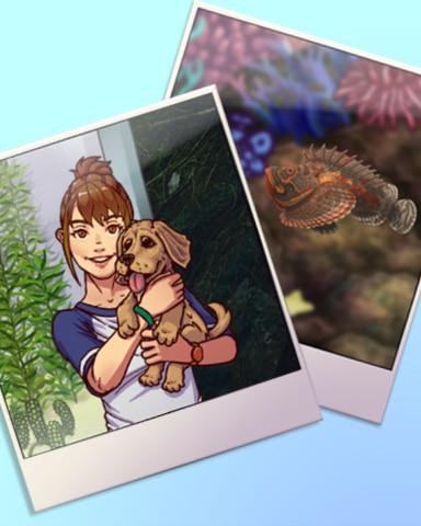 Double Take Badge - Quinn's Aquarium