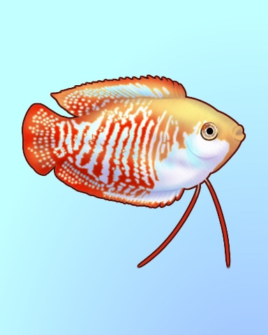 Small Swimmer Badge - Quinn's Aquarium