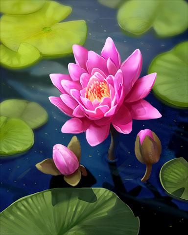 Calm Reflection Badge - Jungle Gin HD