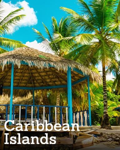 Caribbean Islands Badge - Royal Wedding: One Year Later